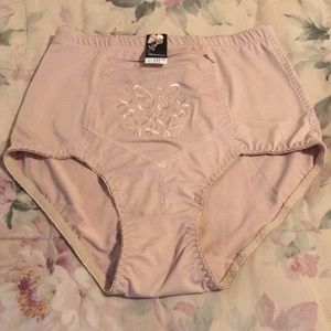 Silk n Satin Control Panties (NWT)